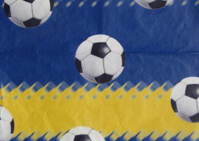 Fotbal / Lopty